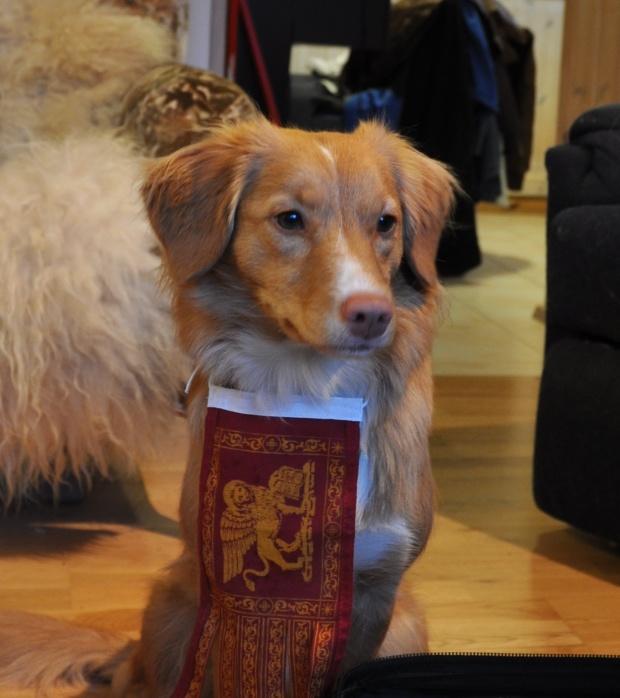 Leia Lannister